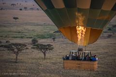 Balooning over Serengeti, Tanzania, June 2017 (Catherine Gidzinska and Simon Gidzinski) Tags: 2017 africa ballonin ballooning ballooninginserengeti mararegion serengeti serengetiballoonsafaris tanzania basket fire flying people plains trees tz ngc 7dwf hotairballoon