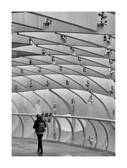 Parasol-Metrosol (jlavila) Tags: 2018 instajlavila2018 marzo metrosol parasol setas sevilla spain