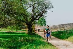 trail_delle_rocche_roero_2018_0298 (Ecomuseo delle Rocche del Roero) Tags: aprile ecomuseodellerocche edizione montà rocche trail uisp trailrunning roero