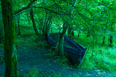 Where It Began, It Must End (Ronny Darko) Tags: ship boat stranded woods forest schiff boot wald baeume tree homecoming roots green wurzeln nature natur gestrandet travel reise killarney ireland irland bateau foret echoue