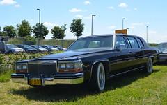 1980 Cadillac Fleetwood Limousine ST-93-GF (Stollie1) Tags: 1980 cadillac fleetwood limousine st93gf lelystad