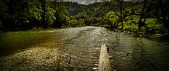 Donau (Jensens PhotoGraphy) Tags: deutschland donautal donau badenwürttemberg fluss river landschaft landscape