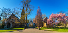 Toronto Necropolis (A Great Capture) Tags: graveyard cemetery tree blossoms magnolia spring necropolis toronto agreatcapture agc wwwagreatcapturecom adjm ash2276 ashleylduffus ald mobilejay jamesmitchell on ontario canada canadian photographer northamerica torontoexplore springtime 2018 panorama architecture cabbagetown victorian gothic