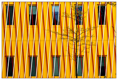 Gelb – yellow (frodul) Tags: architektur ausenansicht detail detailaufnahme fassade fenster gebäude gebäudekomplex gestaltung konstruktion linie outdoor bibliothek campuszernike duisenbergbuilding groningen holland nederland netherland niederlande paviljoen rijksuniversiteit gelb gitter pavillon