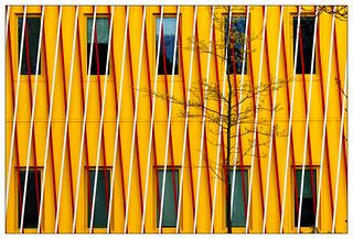 Gelb – yellow