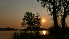 ein schöner Sonnenuntergang (marionkaminski) Tags: namibia windhook penduka sunset coucherdusoleil puertedelsol tree arbre arbol see lake lago reflection gegenlicht refletion spiegelung