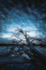 Fear of the dark (petrisalonen) Tags: dark night nightphotography finland river nature water reflection blue tree landscaoe snow ice spring sky atmosphere clouds