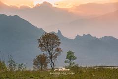 _Y2U2011.0313.Sa Pả.Sapa.Lào Cai (hoanglongphoto) Tags: asia asian vietnam northvietnam northwestvietnam landscape scenery vietnamlandscape vietnamscenery vietnamscene sapalandscape sunset sunsetinsapa nature mountain mountainouslandscape flanksmountain sky cloud tree canon canoneos1dx tâybắc làocai sapa sapả phongcảnh thiênnhiên thiênnhiênsapa hoànghôn hoànghônsapa bầutrời mây núi sườnnúi cây phongcảnhtâybắc hoànghôntâybắc