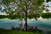 INSIDE OUT (LighthouseFair) Tags: inside insideout nature tree happy flikr river italy