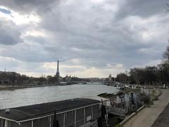 Paris 044. (Joanbrebo) Tags: iphone365 iphonex fleuve river riu rio france paris laseine