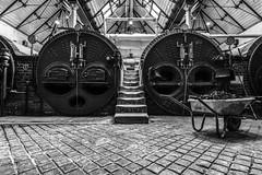 Galloway boilers (sarah_presh) Tags: papplewick pumpingstation coal burner steam mono monochrome old historic victorian nottinghamshire mansfield uk england nikond750 interior inside steps wheelbarrow fuel boiler gallowayboiler stone brick oven