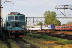 Leszno PKP  |  2018 (keithwilde152) Tags: eu07195 ep071014 leszno wielkopolska pkp poland 2018 town yard depot tracks ic passenger train landscape electric locomotives outdoor spring sun
