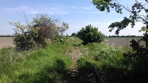 Spoor tussen Baarland en Oudelande