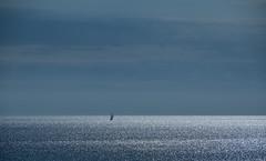 Sailing on silver waves (matti451) Tags: segeln sea sailing wellen silverlight sky