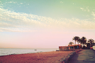 Pink sunset. Summer seascape. Palms trees and coastal cafe