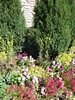 Lisle, IL, Morton Arboretum, Garden Flowers (Mary Warren 10.5+ Million Views) Tags: lisleil mortonarboretum garden park nature flora green stone limestone wall blooms blossoms flowers