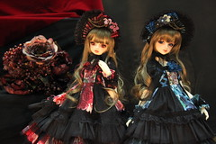 Volks Dolpa 39 - Tokyo (chostett) Tags: dolpa volks super dollfie sd sd13 megurine luka