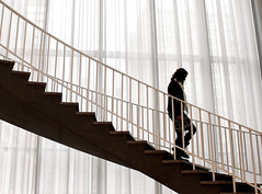 The Descent (coollessons2004) Tags: artinstitute chicago stairs girl architecture