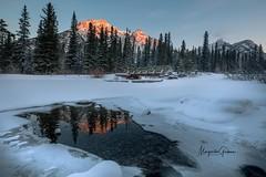 Peek-a-boo (Margarita Genkova) Tags: ice snow rockymountains sunrise landscape nature canada alberta nakiska mtloretteponds