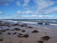 Findhorn Beach, Moray Coast, April 2018 (allanmaciver) Tags: findhorn beach moray coast scotland sand sea shore seaweed clouds low view waves water fresh air enjoy explore allanmaciver