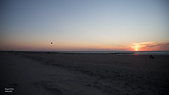 Middelkerk (Deyaert Didier) Tags: belgique belgie belgium middelkerk mer du nord noordzee zee sea plage kust strand sable zand soleil ciel zon sun
