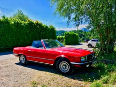 Classic Mercedes Benz Cabriolet in the wild (UweBKK (α 77 on )) Tags: classic mercedes benz cabriolet cabrio convertible red sports luxury car oldtimer vehicle auto automobile parking tree bavaria bayern deutschland germany europe europa iphone