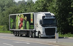 Gregory distribution GN66 SYF at Gledrid services (Joshhowells27) Tags: lorry truck volvo fh refrigerated gregory