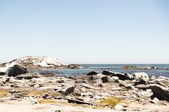Lüderitz (Joheina Hamami) Tags: frankfurt germany nikon f100 best camera photography prime lens 35mm 50mm 14 18 sigma art 1680 70200 world street strasenfotografie city snap portrait flickr joheina hamami