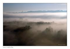 Loire & Brume (Bruno-photos2013) Tags: brume bretagne brouillard loire loireatlantique ligérien leverdujour sunrise landscape paysageligérien paysage arbres nature naturepaysage fleuve