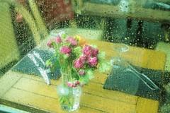 Un bouquet de larmes - Un hommage pour toutes les femmes violées (Paolo Pizzimenti) Tags: flou ivre yeux bouquet projet paolo paris olympus omdemiimkii zuiko 25mm f18 17mm mirrorless m43 film pellicule