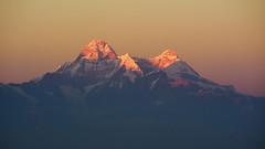 When I witnessed a divine sight.. (draskd) Tags: mtnandadevi nandadevi binsar almora himalayanpeak himalayas india kumaon kumayun uttarakhand sunset sunsetcolors nikond7100 landscape mountainpeak mountain sky sunsetsky snowtopped snowcapped