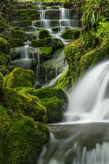 Badger Falls moss on the rocks