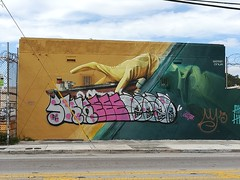More art near Wynwood Walls Miami.  It's too bad about the graffiti onto of the other stuff.