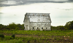 Old Metal-roofed Barn (SteveFrazierPhotography.com) Tags: farm barn old spring sprintime stormy rainy clouds overcast illinois il farming farmland agriculture field plowed rural country countryside scene scenery landscape outdoor evening stevefrazierphotography chili art artwork canoneos60d