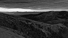 Hohneck - Avril 18 - 029 (sebwagner837_55) Tags: hohneck haut rhin hautrhin alsace lorraine vosges grand est grandest france alpes suisses forêt noire scharzwald petit ballon tödi blauen belchen