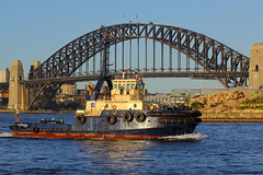 Gloucester, Darling Harbour, Sydney, September 11th 2014 (Southsea_Matt) Tags: gloucester tug tugboat darlingharbour sydney newsouthwales australia september 2014 spring canon 60d sigma 70200mm passengertravel publictransport sea harbour wharf ferry boat ship vessel