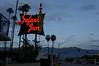 Safari Inn (tamasmatusik) Tags: burbank losangeles safariinn motel hotel tjhooker dusk lights neonlights sony sonynex nex6 sigma sigmalens 30mm milc neonsign neon sky road sign tree palmtree