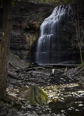Tiffany Falls, Hamilton (Faron Dillon) Tags: tiffany falls water waterfalls canon 5ds long exposure sigma art 35mm nisifilters 10stop rocks trees saturated