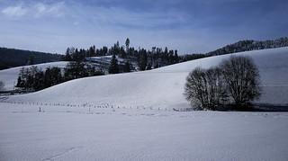 Ein Wintertag im Murgtal bei Baiersbronn.