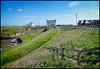Seaton Sluice To Holywell Dene Walk, Northumberland, UK - 2018. (John Mac 2011 UK) Tags: johnmacstravelphotography johnmacsweeklywalkswiththeladslasses2018 northumberland northumberlandcoast seatonsluice seatonsluicetoholywelldenewalk thenorthofengland uk unitedkingdom