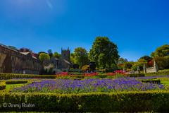 Lanhydrock Gardens (JKmedia) Tags: spring may 2018 cornwall lanhydrock nationaltrust boultonphotography bluebells blue green sunny warm gardens