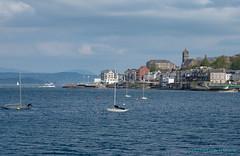Gourock (Rourkeor) Tags: gourock sea scotland unitedkingdom gb yachts boats reflections water town spire scenic olympus omd em1mk2 12100mmpro mft