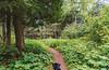 Cortana at Cascade River State Park, Minnesota (Tony Webster) Tags: cascaderiverstatepark cortana minnesota dog hike hikingtrail trail grandmarais unitedstates us