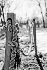 Rope B&W (DaveStrong) Tags: helsinki shadows shadow canon 5d 5dmarkii 5dii 5d2 5dmark2 mark markii mark2 ii 2 24105mm 24105 24105l finland finlan rope maritime sailing coast post posts tied tie knot knotted