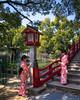 At the Dazaifu Tenmangu Shrine (josefrancisco.salgado) Tags: apple dazaifu dazaifutenmangū fukuoka japan shinto iphone iphone8plus kimono mujer shrine woman daizafushi fukuokaken jp