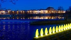 Yellow penguins by the Cracking Arts Group, Prague, Czech Republic (David McKelvey) Tags: 2018 europe czech republic prague praha sony dscrx100 night dark vltava river