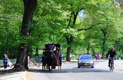 Modes of transport, Central Park, New York City, USA. (Roly-sisaphus) Tags: nyc thebigapple unitedstatesofamerica parks