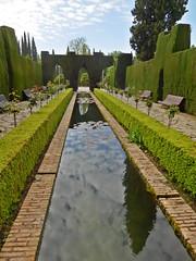 DSCF5507k Alhambra, Granada (Thomas The Baguette) Tags: granada spain granadaspain espagne espana alhambra nesrid nesridpalace patiodelosleones lionfountain comares moorish fountains architecture gardens machuca alcazaba