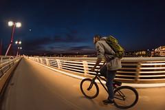 Cruising (Viktor Kiss) Tags: night dusk bluehour nikon d850 lowlight 8mm fisheye samyang 35 mtb ride motion bridge budapest hungary lights