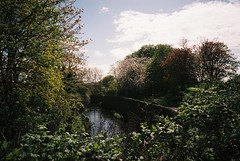 The River Frome comes out from under the M32 (knautia) Tags: riverfrome easton bristol england uk april 2018 film ishootfilm olympus xa2 nxa2roll6 fuji superia 400iso olympusxa2 river park riversidepark